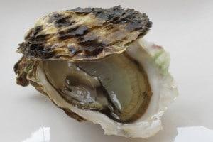 huître apport en cuivre et en zinc